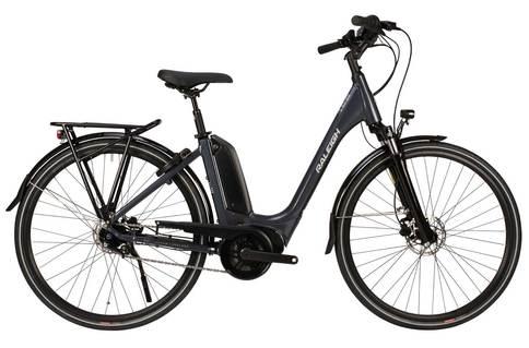Raleigh Motus Tour Lowstep Nexus 2020 Electric Hybrid Bike (Grey, 46cm)